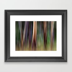 Colours of Australia Framed Art Print