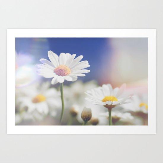 Meadow of daisies Art Print