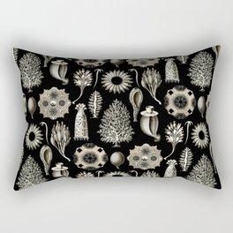 Ernst Haeckel - Scientific Illustration - Calcispongiae Rectangular Pillow