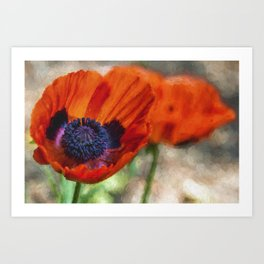 Two Poppies Painterly Art Print