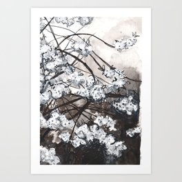 Cherry Blossom in the Rain - Ink Drawing Art Print