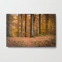 I love autumn ! Metal Print
