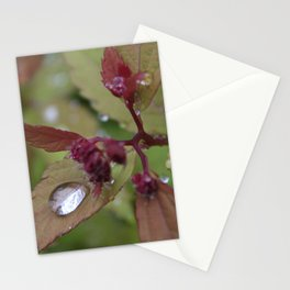 Iridescence Stationery Cards