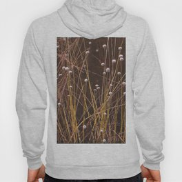 Silver buttons Hoody