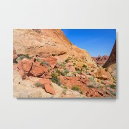 Coat-of-Many-Colors 0906 - Valley of Fire State Park, Nevada Metal Print
