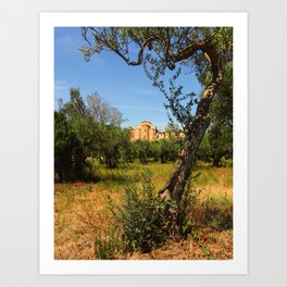 Italy, olive trees and an ancient abbey Art Print
