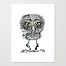 Owl with snowdrop Canvas Print