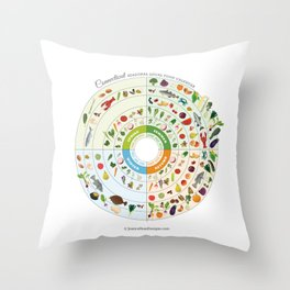 Connecticut Seasonal Local Food Calendar Throw Pillow