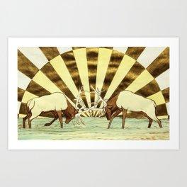 Elk Battle Art Print