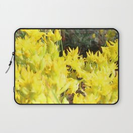 Watercolor Flower, Yellow Stonecrop 02, Fall River Road, RMNP, Colorado Laptop Sleeve