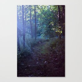 The Magic at Dusk Canvas Print