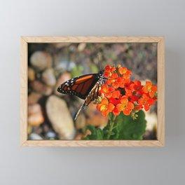 Nirvana Framed Mini Art Print