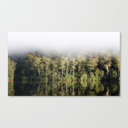 A tree lined lake on a foggy winter's Day Canvas Print