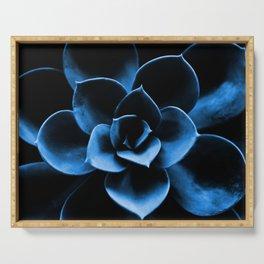 Dark Blue Succulent Plant #decor #society6 #homedecor Serving Tray