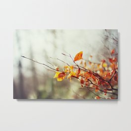 Fire in Autumn Metal Print