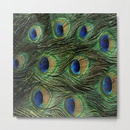 Peacock Design Metal Print