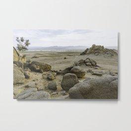 Somewhere in the Gobi Desert Metal Print