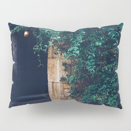 Into the Ivy, Down the Hall Pillow Sham