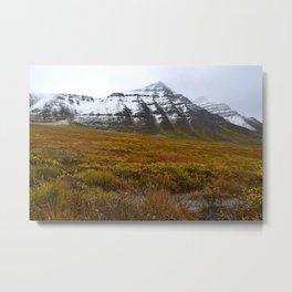 Arctic Autumn Metal Print