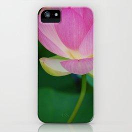 Lotus Blossom Flower 30 iPhone Case