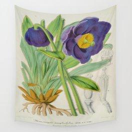 Meconopsis Simplicifolia Vintage Botanical Floral Flower Plant Scientific Wall Tapestry