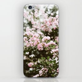 Crape Myrtle in New Orleans iPhone Skin