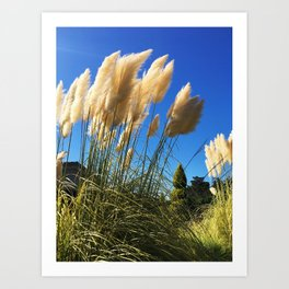 Weeping in the Wind Art Print