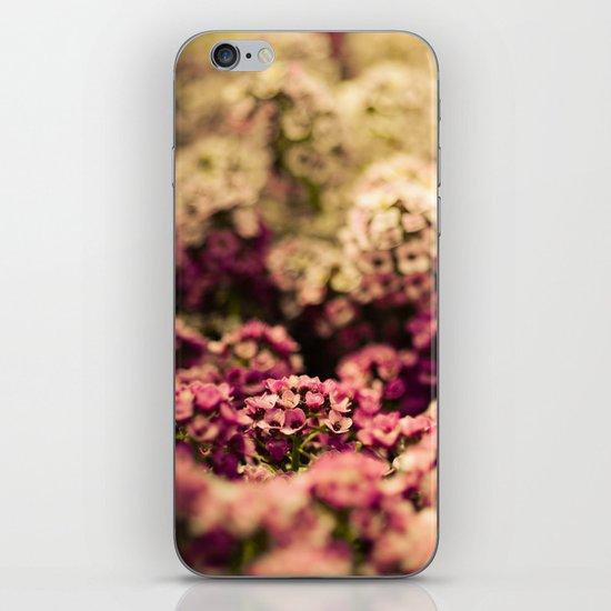 Serendipitous Moment iPhone & iPod Skin