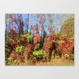 fall - winter Canvas Print