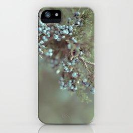 Cedar Berry iPhone Case