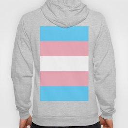 Trans Pride Flag Hoody
