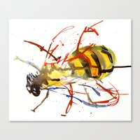 bee Canvas Prints featuring Bee by Lauren Thawley