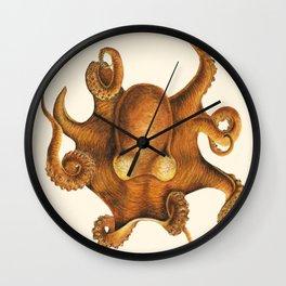 Scientific Orange Octopus Wall Clock