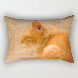 Orange Cat Resting On The Terrace #decor #society6 #buyart Rectangular Pillow