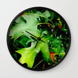 Maple Leaves Changing Color In Autumn Wall Clock