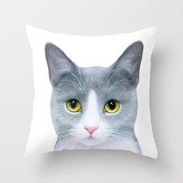 Cat 611 Throw Pillow