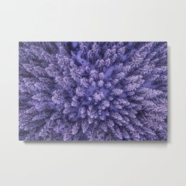 PURPLE - FORREST - TOP - VIEW - PHOTOGRAPHY - NATURE Metal Print
