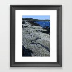 Barnacle Rocks at Acadia Framed Art Print