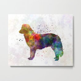 Nova Scotia Duck Tolling Retriever in watercolor Metal Print