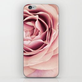 My Heart is Safe with You, My Friend - pale pink rose macro iPhone Skin