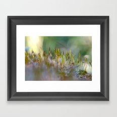 The MOSS 2 Framed Art Print