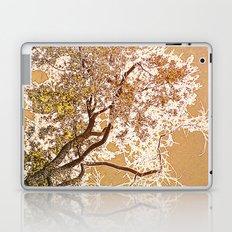 Golden Sky Laptop & iPad Skin