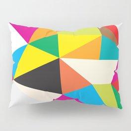 Tumble Pillow Sham