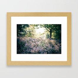 morning heather Framed Art Print