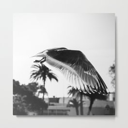 Filigrane Metal Print