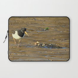 Oystercatcher (Haematopus) Laptop Sleeve