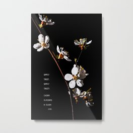 Sakura flowers on black 04 Metal Print