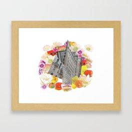 Ruban  Framed Art Print