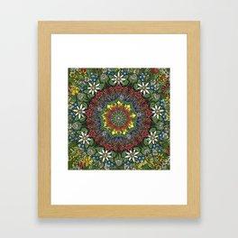 Garden Burst Framed Art Print