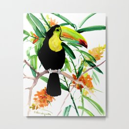 Toucan, Tropical Art, tropics Metal Print
